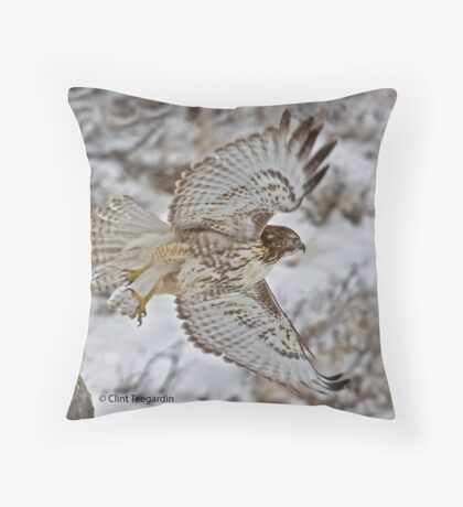 Inflight Red Tail Hawk Throw Pillow