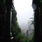 Monsoon in Jaipur by LP-D