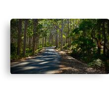 On the road to Margaret River Canvas Print
