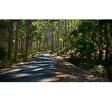 On the road to Margaret River Photographic Print