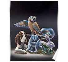 Pet Life Poster