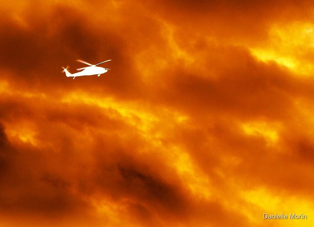 Fire Sky by Danielle Morin