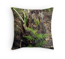 Like a Phoenix...they rise from the Ashes. Throw Pillow