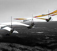 Flight over Mt Hood by Bill Lane
