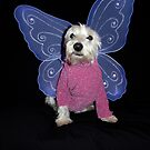 Westie Fantasies by Pascal and Isabella Inard