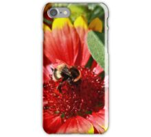 Bee on a blanket iPhone Case/Skin