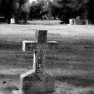 Graveyard by Robert Jenner