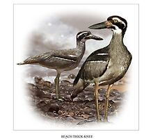 BEACH THICK-KNEE #1 by owen bell