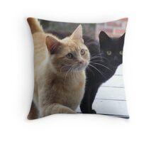 feline potential brazen intruders  Throw Pillow