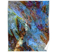Trees & Bark Abstract. Poster
