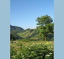 an awe-inspiring Bosnia and Herzegovina landscape Unisex T-Shirt