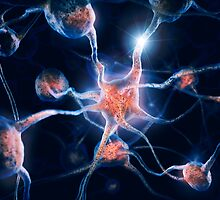 Neurons and neural connections Brain cells 3D illustration art photo print by ArtNudePhotos