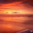 Driftwood in dark red dramatic sunset panoramic scenery over lake Huron art photo print by ArtNudePhotos