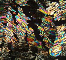 Alanine Amino Acid under the Microscope by Zosimus
