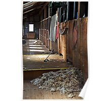 Shearing shed at Shear Outback Poster