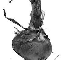 Onion by Marlene Hielema