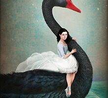 Black Swan by ChristianSchloe
