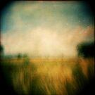 These Last Days by iamsla