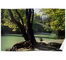 By the waters edge--Northern Greece Poster