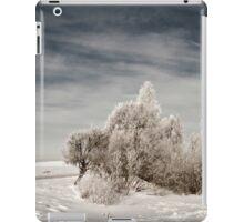 a sprawling Latvia landscape iPad Case/Skin