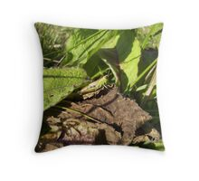 Find me!!! Throw Pillow