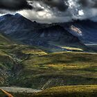 Denali National Park by Gyuri Nagy