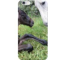 Mare & Foal iPhone Case/Skin