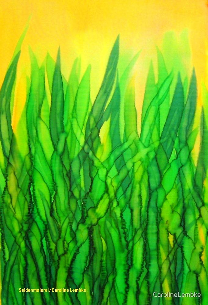 Fresh Smell of Summer by Caroline  Lembke