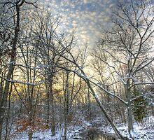 Twilight at Deep Creek by MotherNature