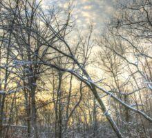 Twilight at Deep Creek Sticker