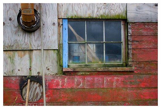 Window Dressing by Rene Hales