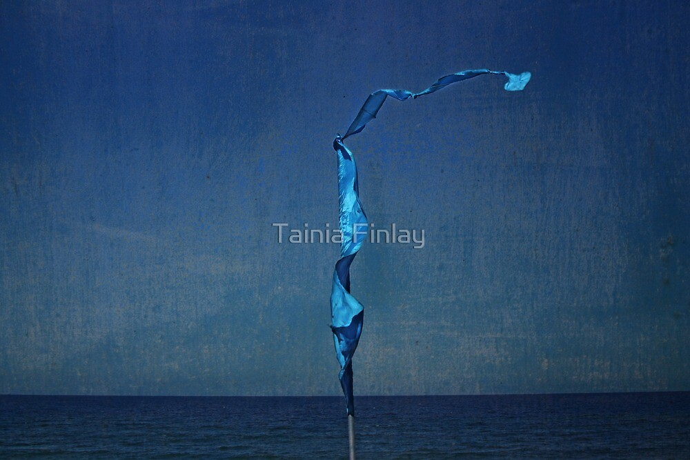 Morning Blues by Tainia Finlay