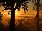 """ Valley still Hidden"" by debsphotos"