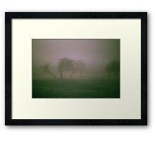 Morning Frost and Fog Framed Print