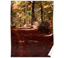 Autumn Impressions 3 Poster
