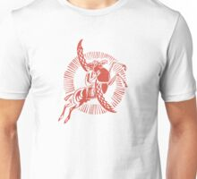 Winged Horse and Rider Unisex T-Shirt