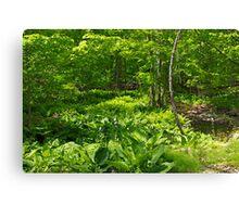 Green Landscape of Summer Foliage Canvas Print