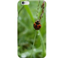 The Climb to the Top iPhone Case/Skin