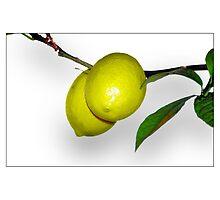 Lemons by MoGeoPhoto