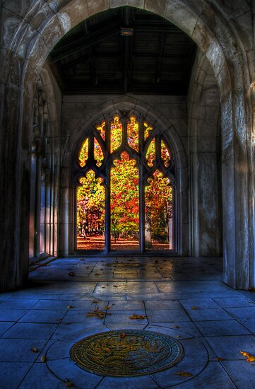 Autumn Colors From The Washington Memorial Chapel by Michael Mill