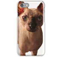 harry in color iPhone Case/Skin