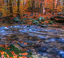 Creek In Autumn by Michael Mill