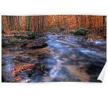 Autumn Creek Poster