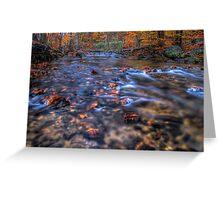 Creek In Autumn Season Greeting Card