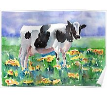 Cow In The Meadow Poster