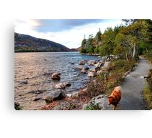 'Jordan Pond Path' Canvas Print