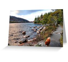 'Jordan Pond Path' Greeting Card