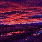 Lower Ohau River Pre-dawn by Tony Burton