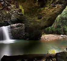 Natural Bridge - Springbrook National Park by Soren Martensen