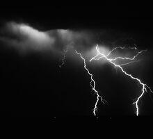 Adelaide Lightning by Paula McManus